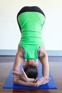 Vinyasa yoga workshops 2014