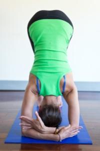 Vinyasa yoga workshops 2014